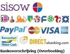 Veilig online betalen