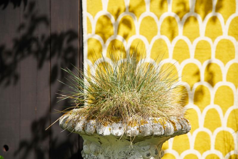 Klippan plaid geel Feathers