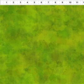Dit Dot Evolution Grass - 1DDE21