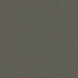 Country Confetti Grey - 20187