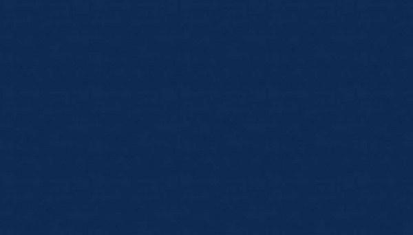 Linen Texture - Navy 1473B10