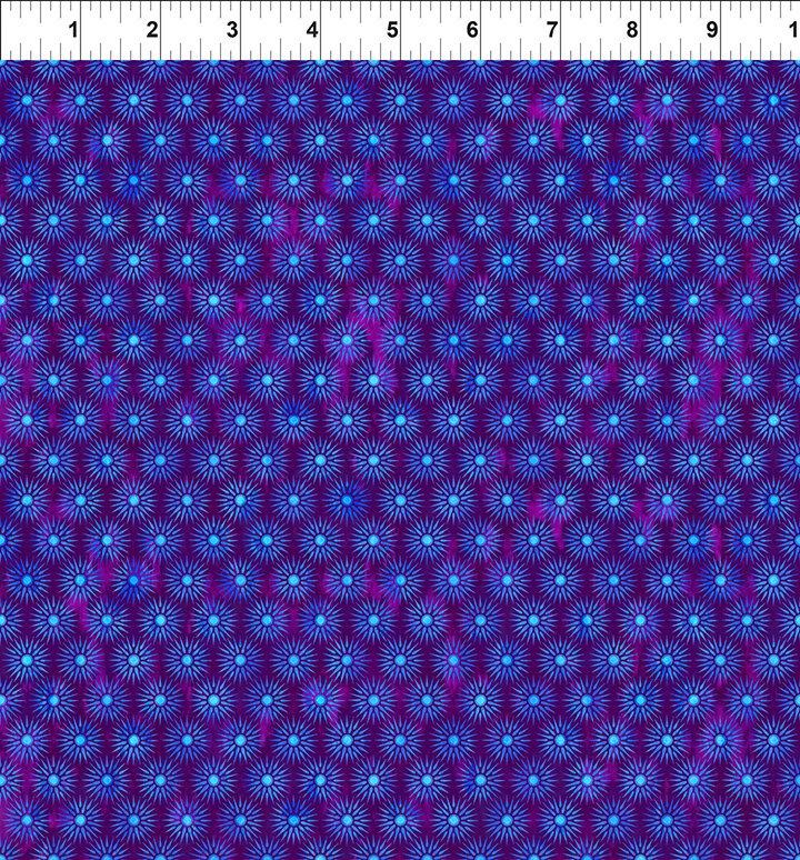Cosmos Suns Purple- 8COS1