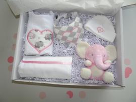 Geboorte giftbox Hart