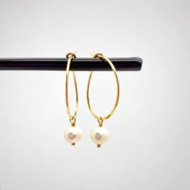 14k gold filled oorbellen met parel