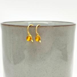 Kleine gouden oorbellen met Barnsteen
