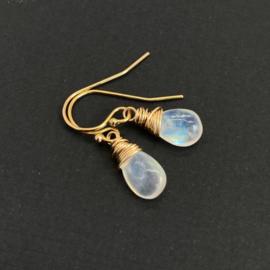 Regenboog maansteen oorbellen, 14k gold fill