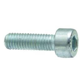 Inbusbout M10 x 25 mm, cilindrisch, DIN 912
