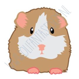 Cavia / Hamster