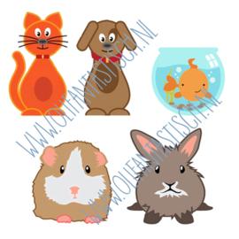 Huisdieren | Magneetje