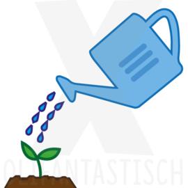 Klusjes   Planten water geven