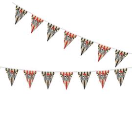 Vlaggenlijn Piratenfeest   10 meter