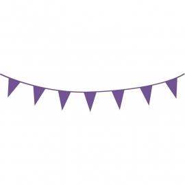 Vlaggenlijn paars | 10m