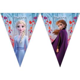 Frozen 2 Vlaggenlijn - 2 meter
