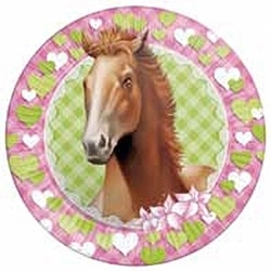 Borden Themafeest Paarden