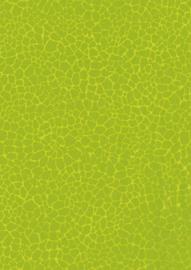 Decopatch decoupage papier | 30 x 40 cm | FDA531O
