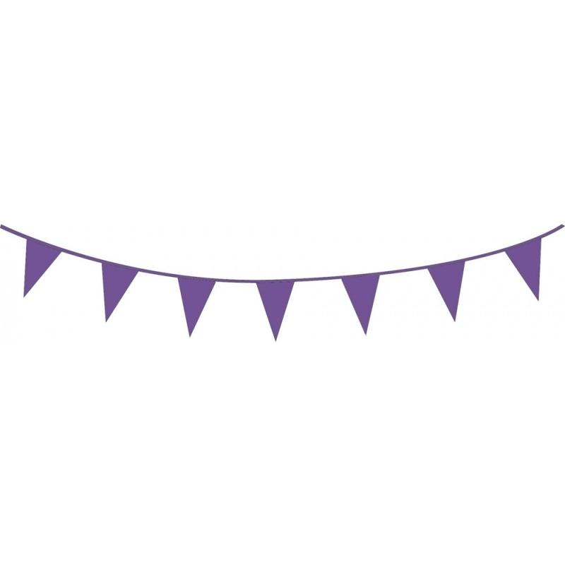 Vlaggenlijn paars   10m