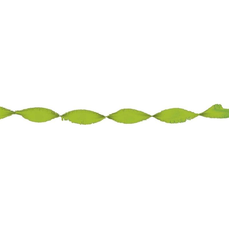 Feestelijke papieren slingers | lichtgroen | 6 m
