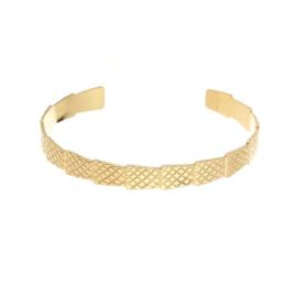 Bangle rvs snake (zilver of goud)