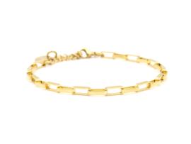 Armband rvs fijne schakel (zilver,goud)