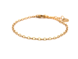 Armband rvs braided (zilver,goud)