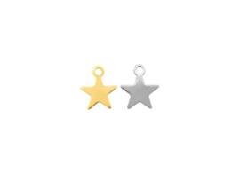Oorbellen hanger ster, rvs zilver of goud plated