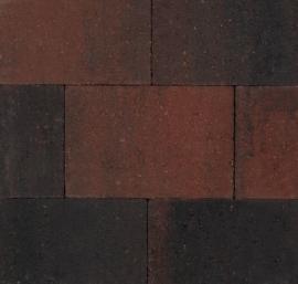 Straksteen 20x30x6 manchester