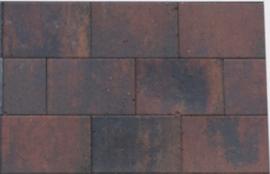 Straksteen 20x30x6 paars gevlamd