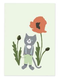 Kat en klaproos