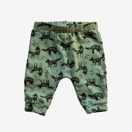 FOX PANTS GREEN
