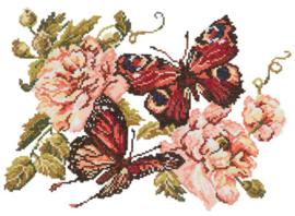 Pioenrozen en Vlinders