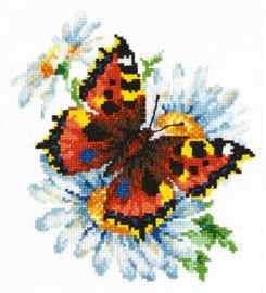 Vlinder en madeliefjes