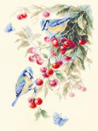 Mezen en Kersen