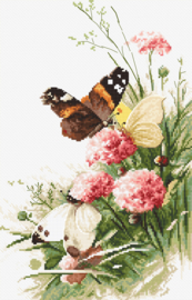Vlinders in het veld