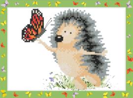 Egel met Vlinder