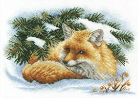 Kleine Vos in sneeuw