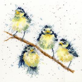 Vogelkwartet
