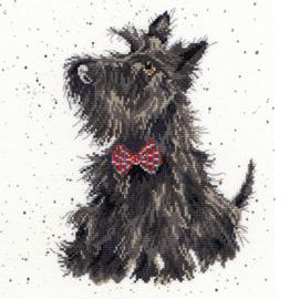 Schotse Terrier
