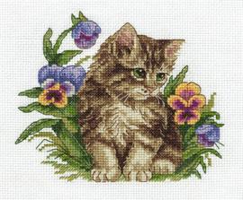Kitten tussen viooltjes