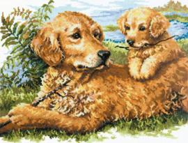 Moeder met pup