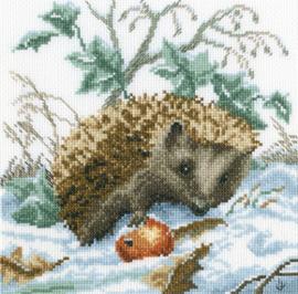 Egel in Sneeuw