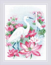 Kraanvogels en Lotusbloemen