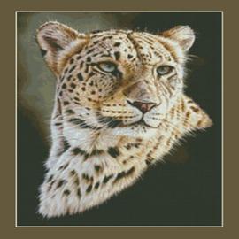 Persian Leopard - Kustom Krafts