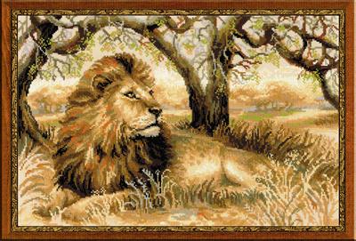 Koning van de wildernis
