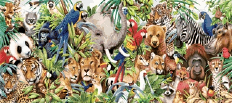 Jungledieren