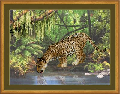 Luipaard bij water