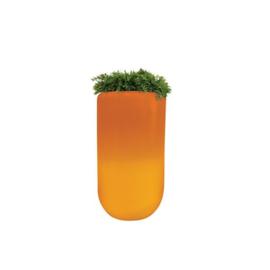 Bloom ! Pill the original met verlichting  107cm hoog en 60cm rond