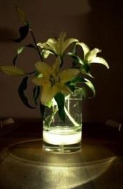 Bloom ! Vase - Vaas op losse voet/bodem van glas waarin LED-verlichting