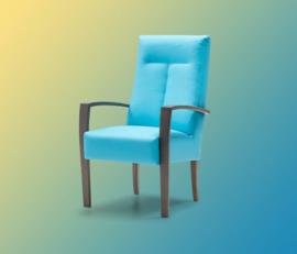 Prominent Dylan Bijzet fauteuil