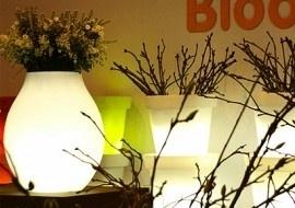 Bloom ! The original vaas Bulb met verlichting