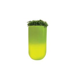 Bloom ! Pill the original met verlichting  90cm hoog en 50cm rond
